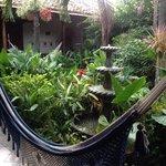 hermoso y relajante el jardin, muy recomendable la comida deliciosa.