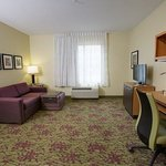 One-Bedroom Suite – Living Area