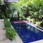 Beautiful Plunge pool