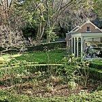 Garden with 1921 Fiat behind glass