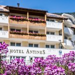 Photo of Hotel Antines