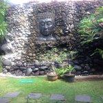 Zen garden out the back