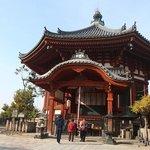 奈良公園興福寺