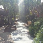 Well maintained tropical grounds