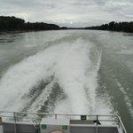 Speeding down the Danube