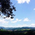 Greve in Chianti from the Garden