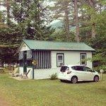 Dog friendly cabin