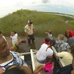 Petite pause dans les Everglades