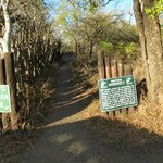 Entrance to Mphafa Hide