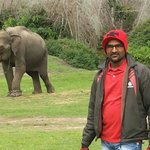 Ramesh Jain at Bandipur National park....