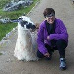 Sílvia com Lhama sorridente em Machu Picchu