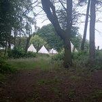 go explore at Pinewood Park