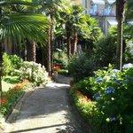 Vialetto del giardino