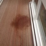 wet stained hall carpet