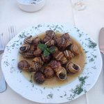 Nice fresh snails not like Holland