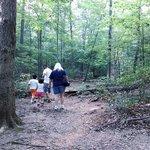 Fairy Stone Hunt Site