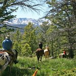 Trail Riding vistas-