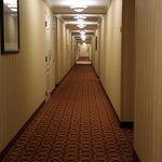 Hallway on ground floor