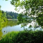 Lake by Jardin des Sports