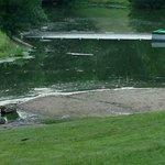 Lake (aka pond)