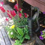 Potted plant with water pump