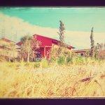Casa Paglia