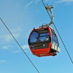 The restaurant is accessed by the Mt. Rainier Gondola, getting there is half the fun!