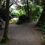 Another camp site