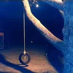 Tire swing and the Super Moon.