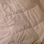 Marker or something on bedspread