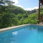 View from villa pool and jungle