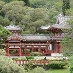 Byodo Temple 2