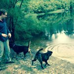 Dogs and I at the Blue Loft Dam
