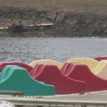 Paddle Boats, Shoreline Park, Mountain View, CA