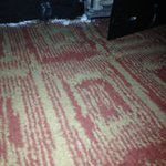 Stains on the carpet, what appears to be boric acid on the floor