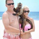 Fun with Milo the Capuchin