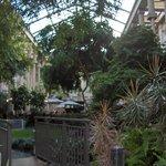 Lobby greenhouse/garden