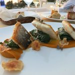 Seabass, Dolmades Stuffed with Mussels and Rice, Carrot Puree and Lemon Sauce