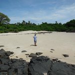 Beach at Isla Iguana