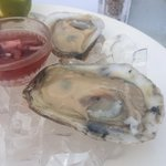 Alfa's oysters.