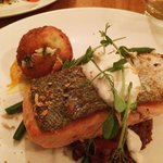 Salmon over roasted lentils