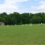 Cricket at Sheffield Park