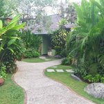 Quaint and lush green walkway to hotel rooms