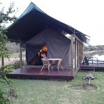Luxury tent overlooking waterhole
