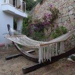 hammock at pool area