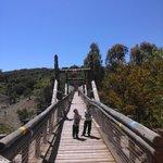 Puente Indio