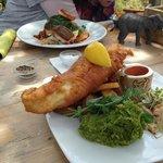 Yummy fish with samphire