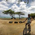 finns cyklar att låna gratis i hotellet