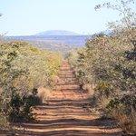 Waterberg Bushveld