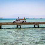 Transportation for divers and snorkelers to the house reef